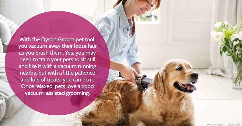 With the Dyson Groom pet tool, you vacuum away their loose hair as you brush them. Yes, you may need to train your pets to sit still and like it with a vacuum running nearby, but with a little patience and lots of treats, you can do it. Once relaxed, pets love a good vacuum-assisted grooming.