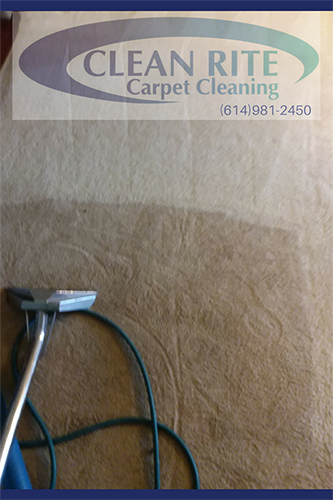 Carpet Cleaning In Gahanna Oh Carpet Cleaning Near Me