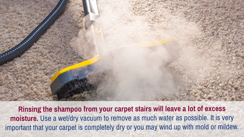 Rinsing the shampoo from your carpet stairs will leave a lot of excess moisture. Use a wet/dry vacuum to remove as much water as possible. It is very important that your carpet is completely dry or you may wind up with mold or mildew.