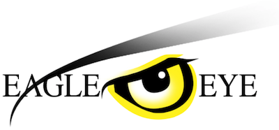 Eagle Eye Optical Logo