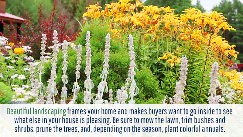 Beautiful landscaping frames your home and makes buyers want to go inside to see what else in your house is pleasing. Be sure to mow the lawn, trim bushes and shrubs, prune the trees, and, depending on the season, plant colorful annuals.