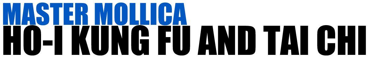 Master Mollica's Kung-Fu & Tai-Chi Logo