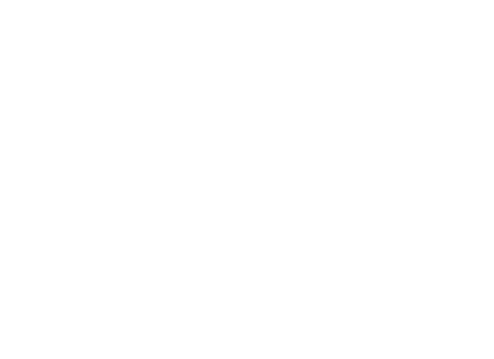 Party Adventure Logo