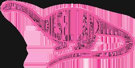 Diesel Land Logo