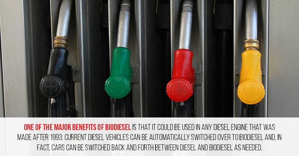 One of the major benefits of BioDiesel is that it could be used in any diesel engine that was made after 1993. Current diesel vehicles can be automatically switched over to biodiesel and, in fact, cars can be switched back and forth between diesel and biodiesel as needed.