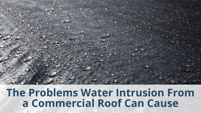 The Problems Water Intrusion From a Commercial Roof Can Cause