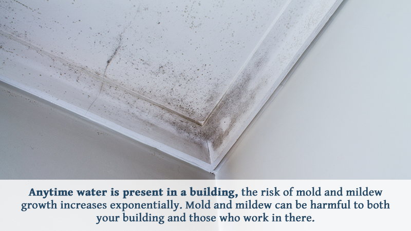 Anytime water is present in a building, the risk of mold and mildew growth increases exponentially. Mold and mildew can be harmful to both your building and those who work in there.