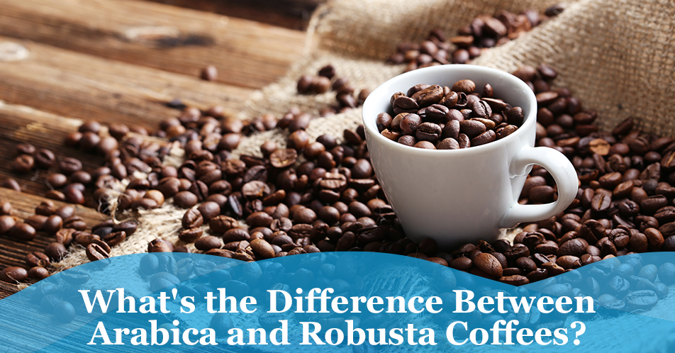 What's the Difference Between Arabica and Robusta Coffees?