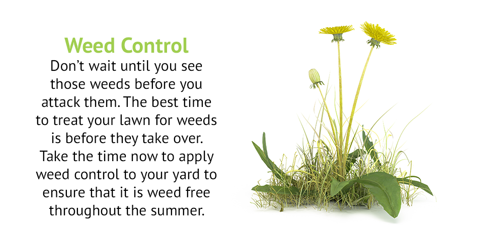 Weed Control Don't wait until you see those weeds before you attack them. The best time to treat your lawn for weeds is before they take over. Take the time now to apply weed control to your yard to ensure that it is weed free throughout the summer.