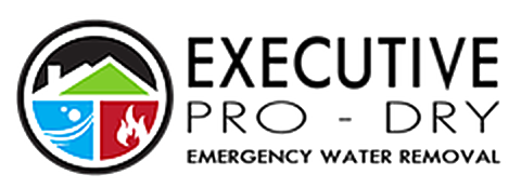 Executive Pro-Dry Water, Sewage & Mold Remediation Logo