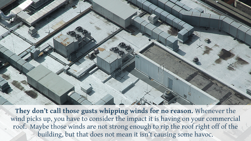 They don't call those gusts whipping winds for no reason. Whenever the wind picks up, you have to consider the impact it is having on your commercial roof. Maybe those winds are not strong enough to rip the roof right off of the building, but that does not mean it isn't causing some havoc.