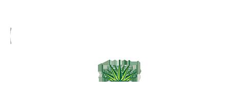 Cielo Bistro Mexico Logo