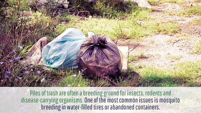 Piles of trash are often a breeding ground for insects, rodents and disease-carrying organisms. One of the most common issues is mosquito breeding in water-filled tires or abandoned containers.