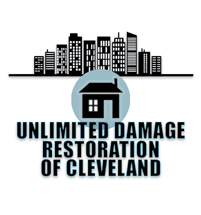 Unlimited Restoration and Preservation Services Logo