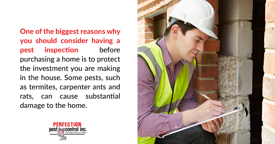 One of the biggest reasons why you should consider having a pest inspection before purchasing a home is to protect the investment you are making in the house. Some pests, such as termites, carpenter ants and rats, can cause substantial damage to the home.