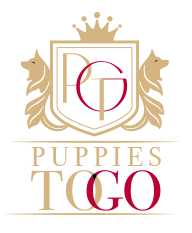Puppies To Go Logo