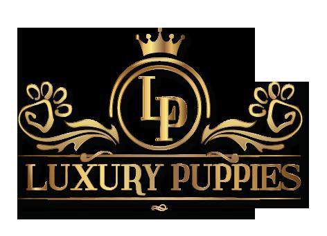 Luxury Puppies Logo