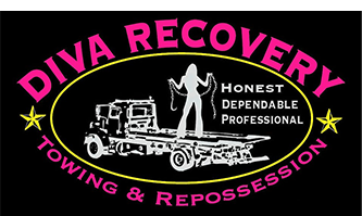 Diva Recovery Logo