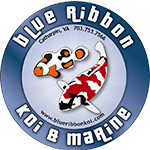 Blue Ribbon Koi & Marine Logo