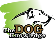 The Dog Knowledge Logo