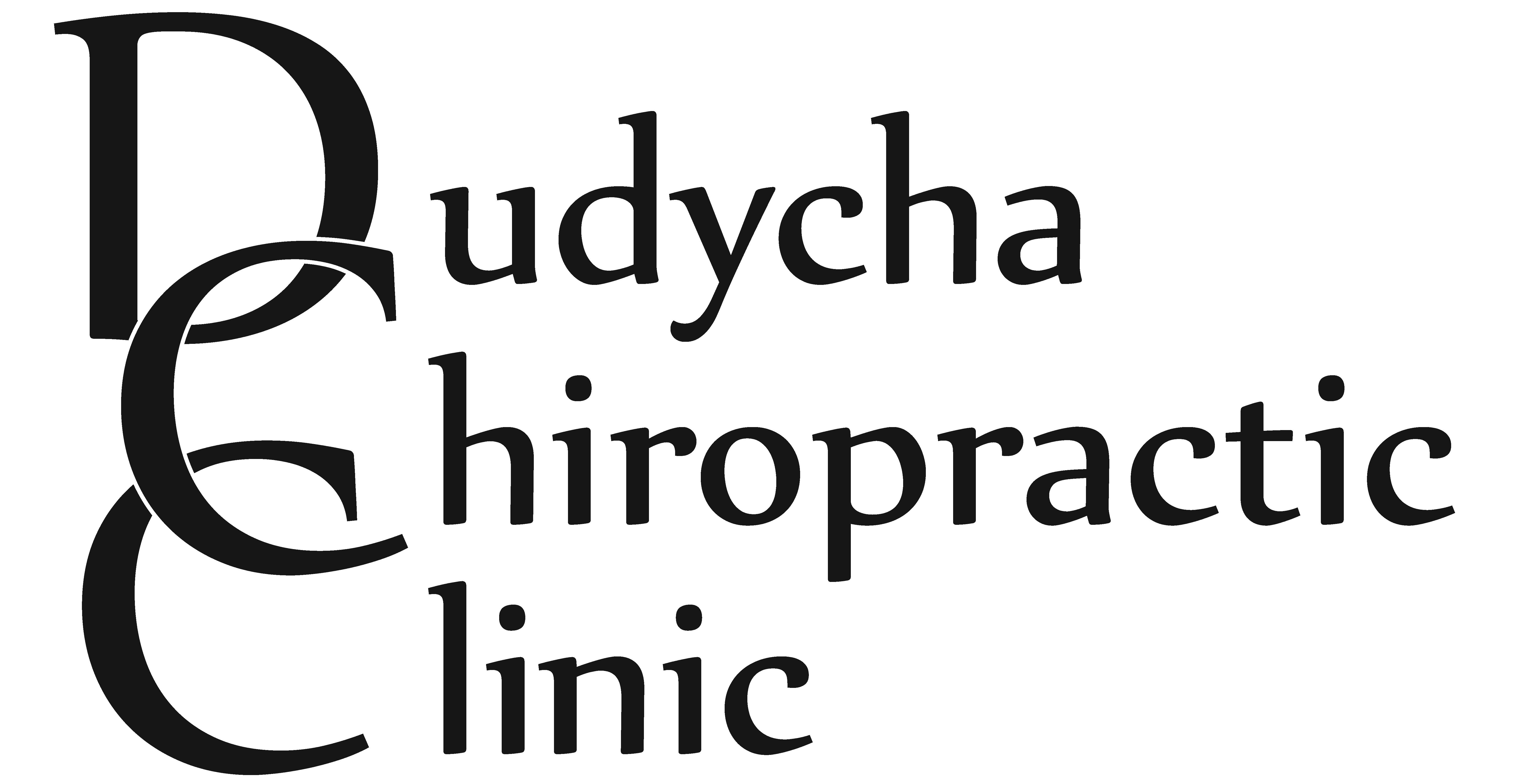 Dudycha Chiropractic Clinic Logo