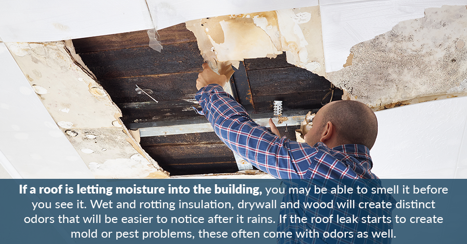 If a roof is letting moisture into the building, you may be able to smell it before you see it. Wet and rotting insulation, drywall and wood will create distinct odors that will be easier to notice after it rains. If the roof leak starts to create mold or pest problems, these often come with odors as well.