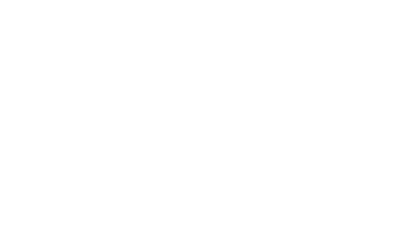 SLI Custom Signs & Apparel Logo