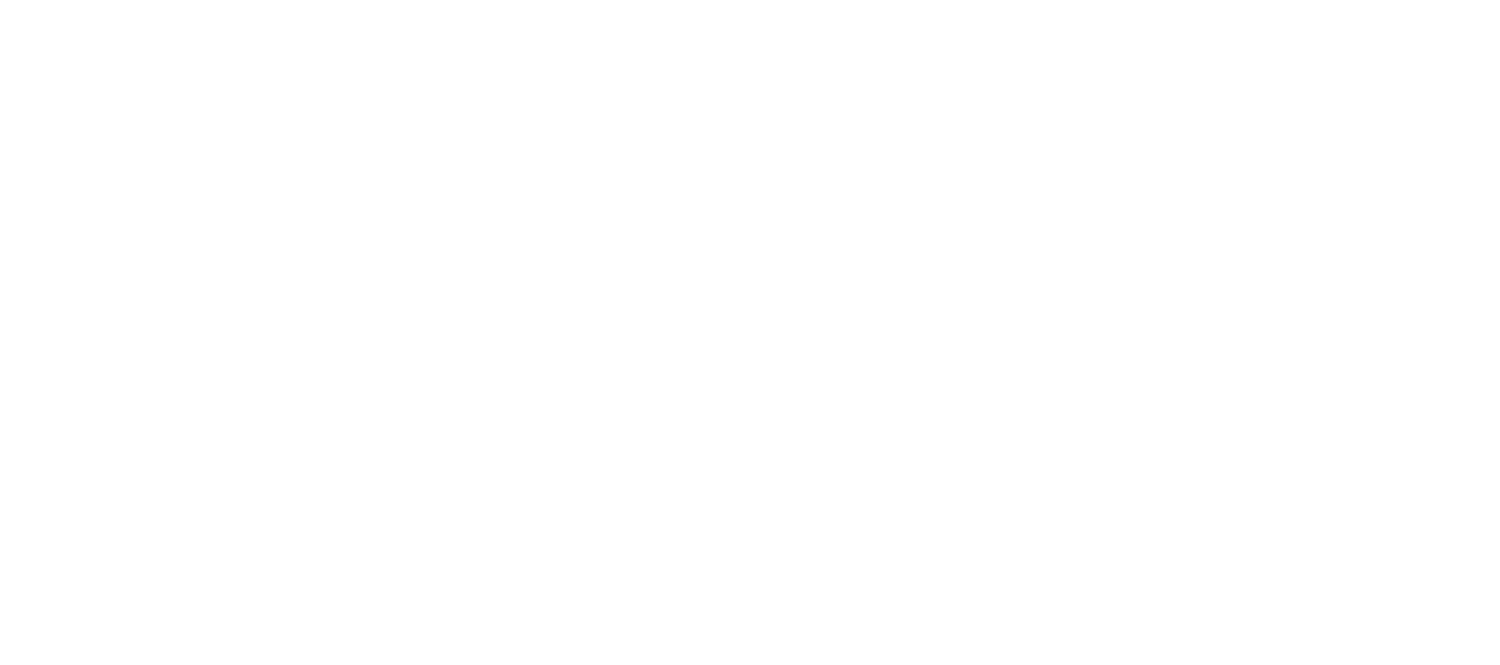 Critter Cleaners Logo