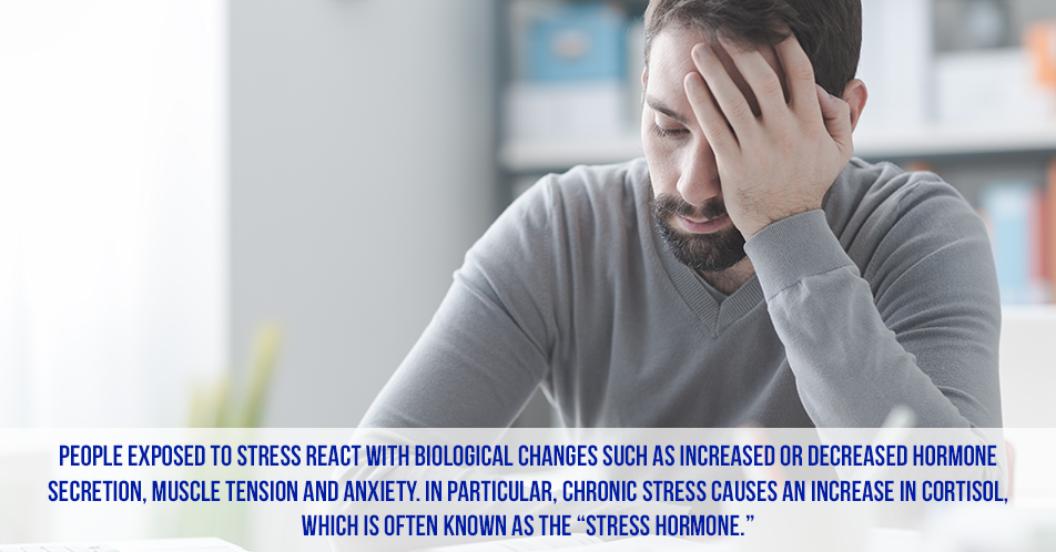 "People exposed to stress react with biological changes such as increased or decreased hormone secretion, muscle tension and anxiety. In particular, chronic stress causes an increase in cortisol, which is often known as the ""stress hormone."""