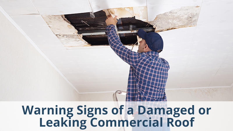 Warning Signs of a Damaged or Leaking Commercial Roof