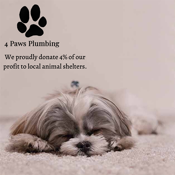 we donate 4% of our profit to local animal shelters