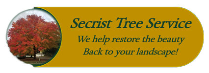 Secrist Tree Service Logo