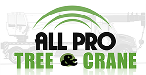 All Pro Tree & Crane, Inc. Logo