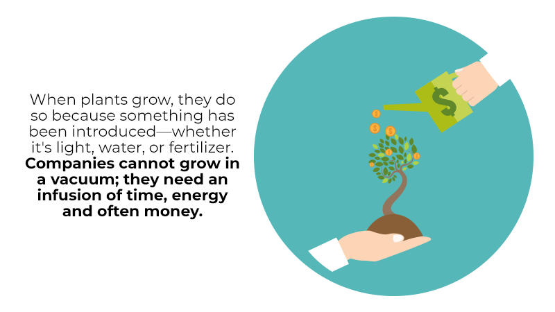 When plants grow, they do so because something has been introduced—whether it's light, water, or fertilizer. Companies cannot grow in a vacuum; they need an infusion of time, energy and often money.