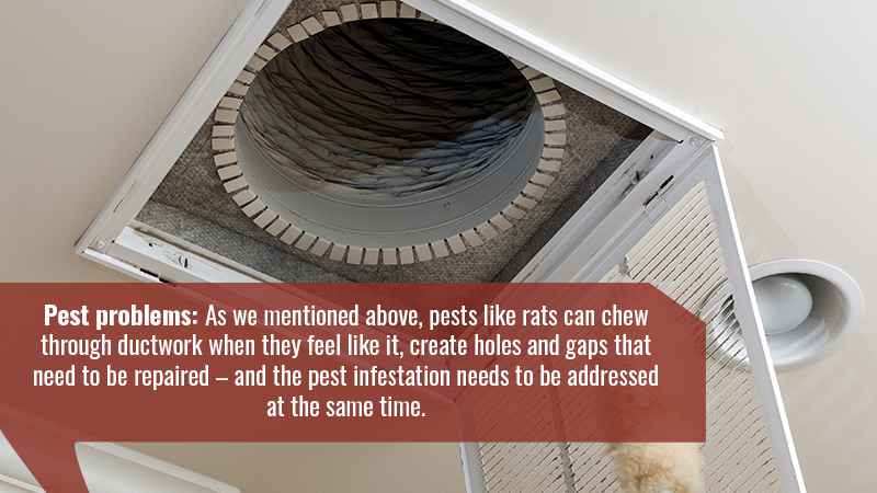 Pest problems: As we mentioned above, pests like rats can chew through ductwork when they feel like it, create holes and gaps that need to be repaired – and the pest infestation needs to be addressed at the same time.