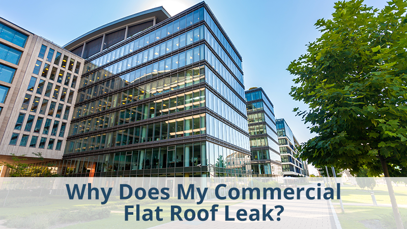 Why Does My Commercial Flat Roof Leak?