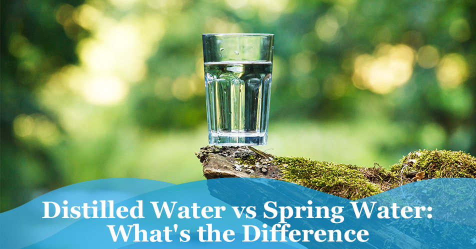 Distilled Water vs Spring Water: What's the Difference