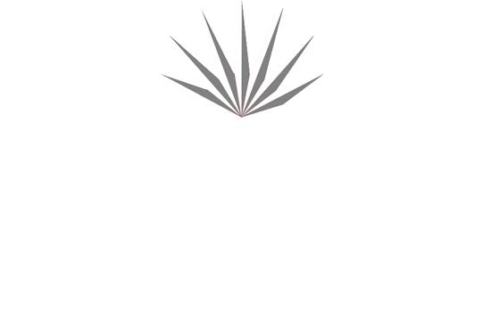 Payne Law Firm Logo