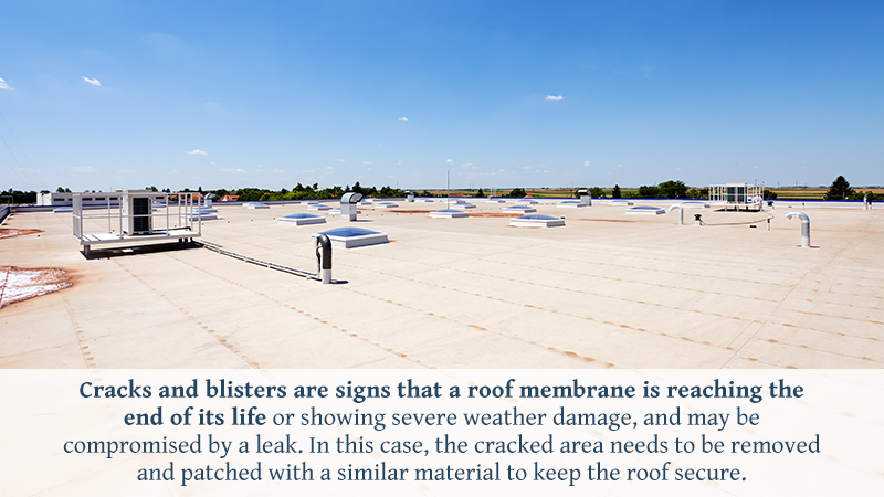 Cracks and blisters are signs that a roof membrane is reaching the end of its life or showing severe weather damage, and may be compromised by a leak. In this case, the cracked area needs to be removed and patched with a similar material to keep the roof secure.