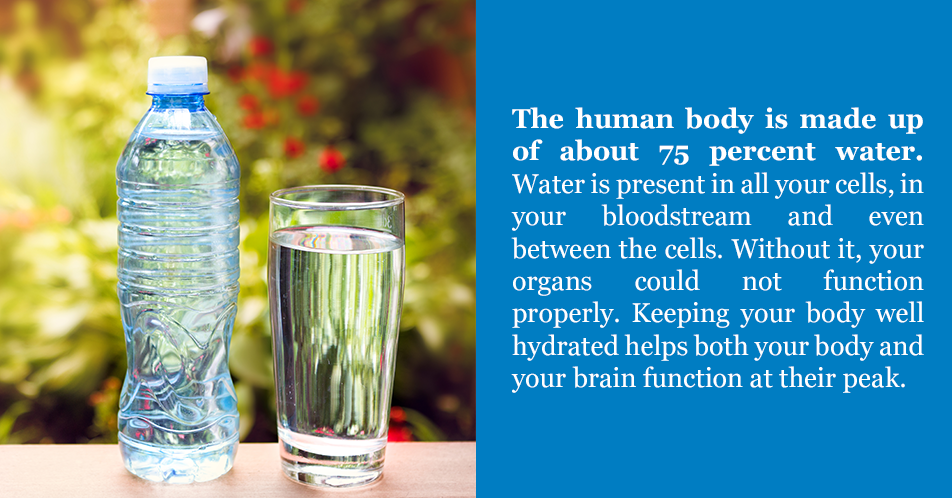 The human body is made up of about 75 percent water. Water is present in all your cells, in your bloodstream and even between the cells. Without it, your organs could not function properly. Keeping your body well hydrated helps both your body and your brain function at their peak.