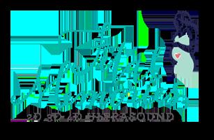 Fetal Memories 2D 3D 4D Ultrasound Logo