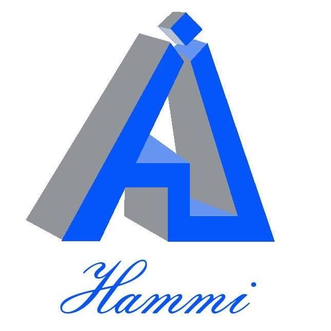 Hammi Computer Services Logo