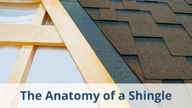 The Anatomy of a Shingle