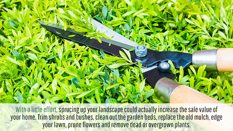 With a little effort, sprucing up your landscape could actually increase the sale value of your home. Trim shrubs and bushes, clean out the garden beds, replace the old mulch, edge your lawn, prune flowers and remove dead or overgrown plants.