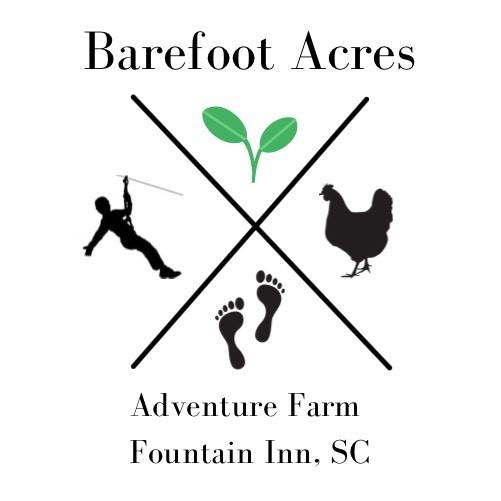 Barefoot Acres Logo