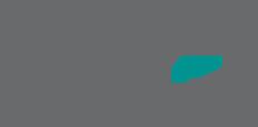 The Carpet Boutique Logo