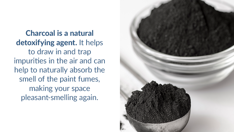 Charcoal is a natural detoxifying agent. It helps to draw in and trap impurities in the air and can help to naturally absorb the smell of the paint fumes, making your space pleasant-smelling again.