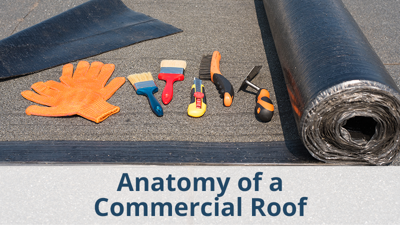 Anatomy of a Commercial Roof