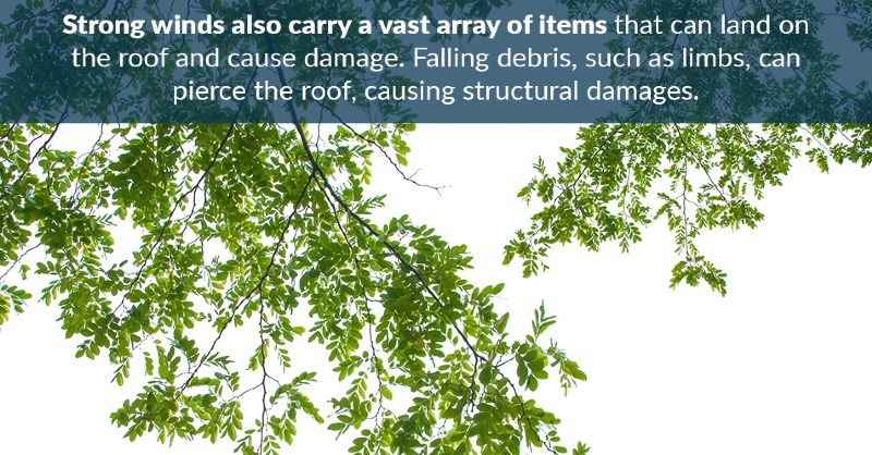 Strong winds also carry a vast array of items that can land on the roof and cause damage. Falling debris, such as limbs, can pierce the roof, causing structural damages.