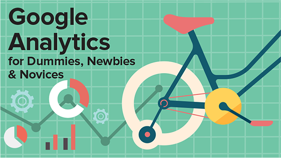 Google Analytics For Dummies, Newbies & Novices